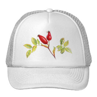 Rose hip fine art hat