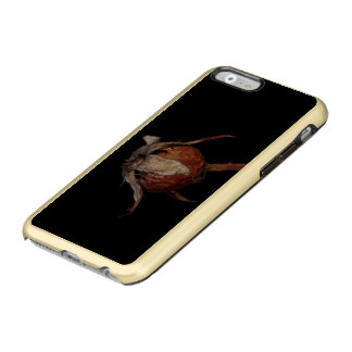 Rose Hip Incipio Feather Shine iPhone 6 Case