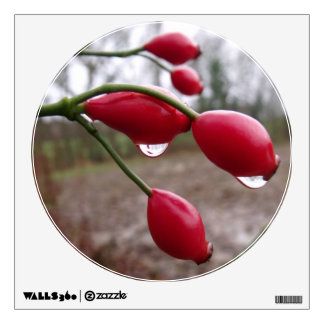 Rose Hips And Rain Wall Sticker
