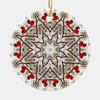 Rose hips on ice ceramic ornament