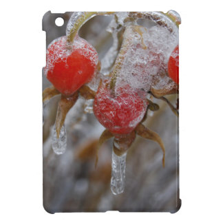 Rose Hips Under Ice iPad Mini Cases