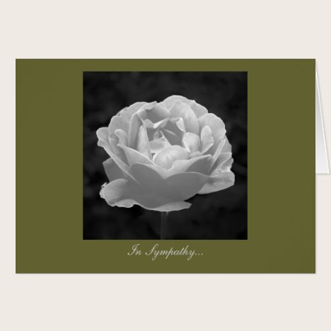 Rose In Black And White - In Sympathy Card