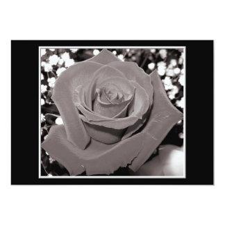 Rose in black, white & gray card