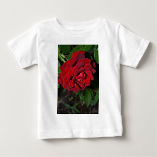 Rose in Deep Red Baby T-Shirt