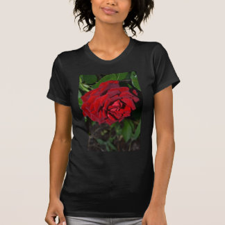Rose in Deep Red T-Shirt
