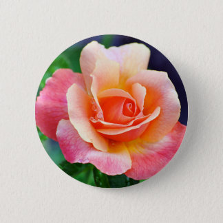 Rose in Full Bloom Button