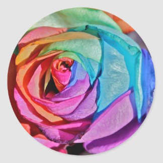 Rose in multi-colours Stickers
