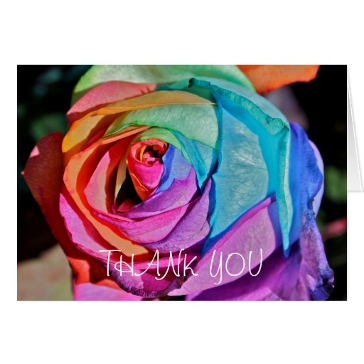 Rose in multi-colours Thank You Card Card