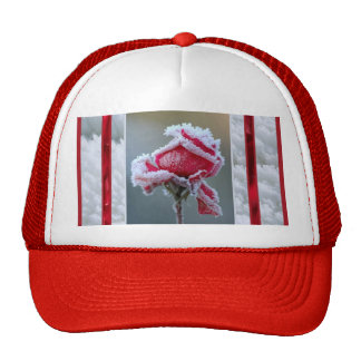 Rose in Winter Cap Trucker Hat