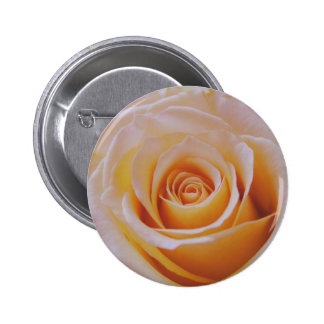 Rose in Yellow Pinback Button
