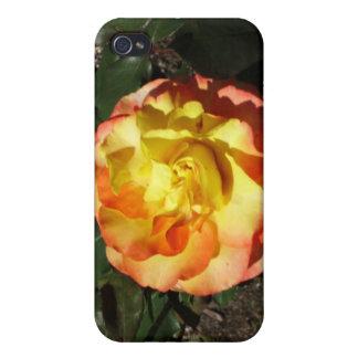 rose iPhone 4/4S case