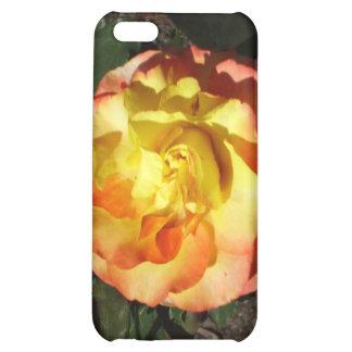 rose iPhone 5C cover