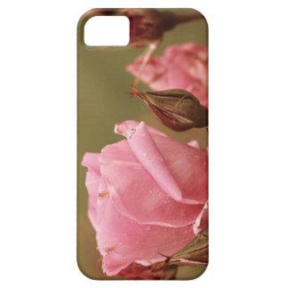Rose iPhone Case Provo Utah Lds Temple iPhone 5 Case