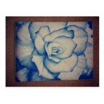 rose.jpg azul postal