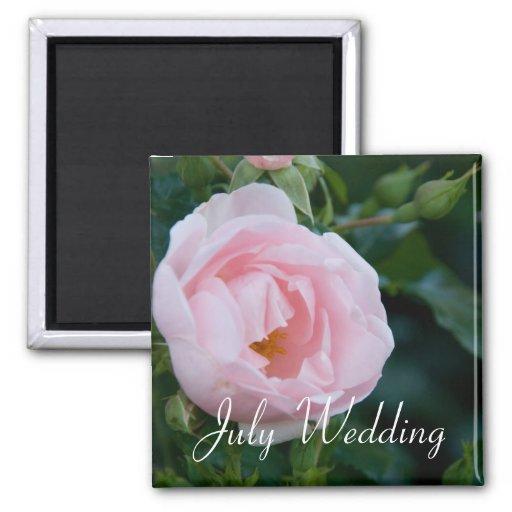 Rose :: July Wedding Magnet