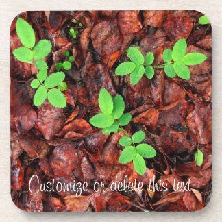 Rose Leaves; Customizable Coaster
