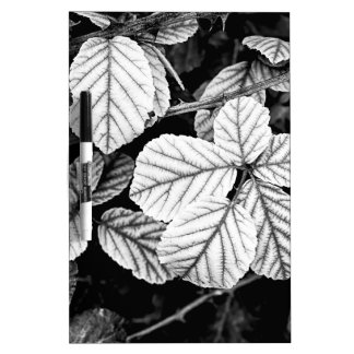 Rose leaves Dry-Erase board