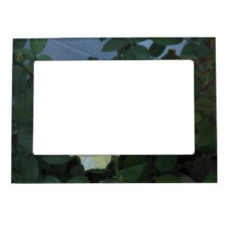 Rose Leaves Photo Frame