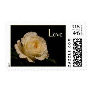Rose Love Stamp