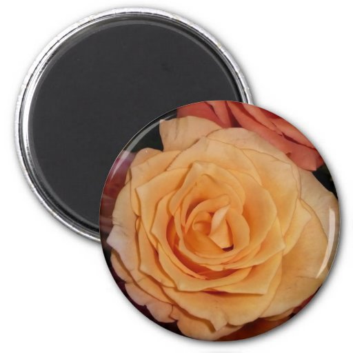 Rose magnet