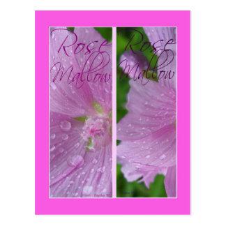 ROSE MALLOW BOOKMARKS POSTCARD