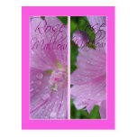ROSE MALLOW BOOKMARKS POSTCARDS