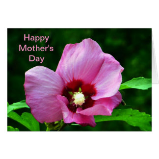 Rose Mallow Mother's Day Greeting Card
