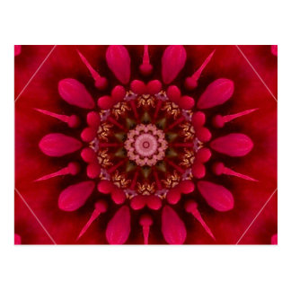 Rose Mandala Postcard