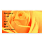 Rose - Mango- business card template