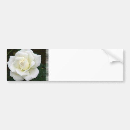 Rose Meanings Bumper Sticker