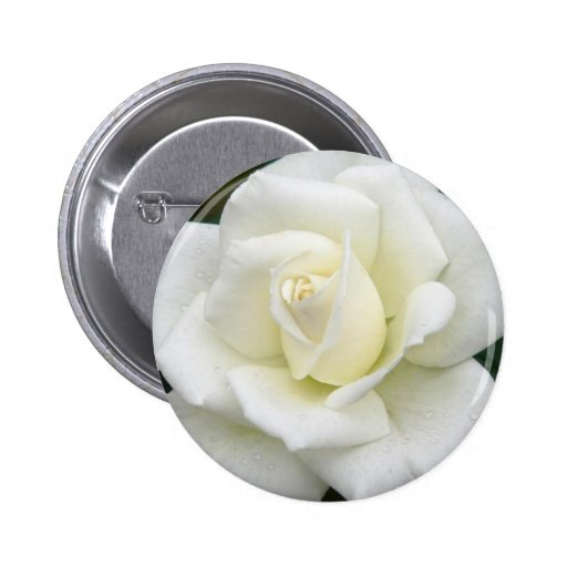 Rose Meanings Button
