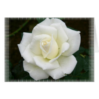 Rose Meanings Greeting Card