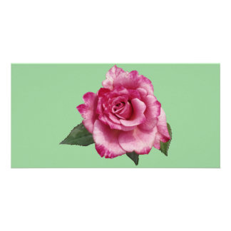 Rose Miniature Gift Photo Greeting Card