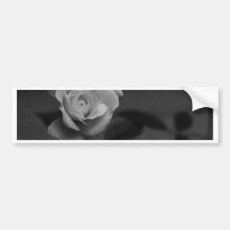 Rose monochrome photographed by Tutti Bumper Sticker