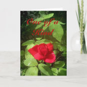 Rose Mother's Day Card card
