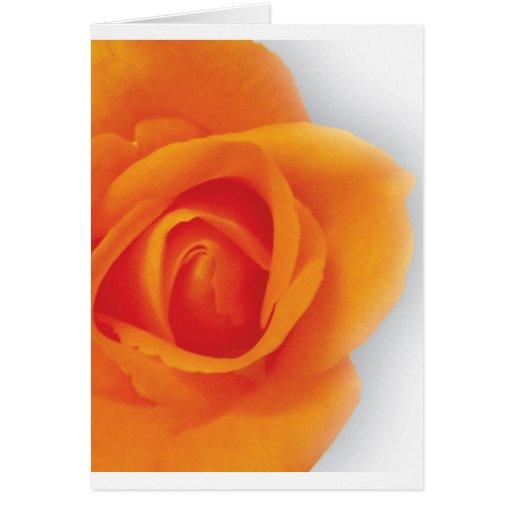 Rose multipurpose card