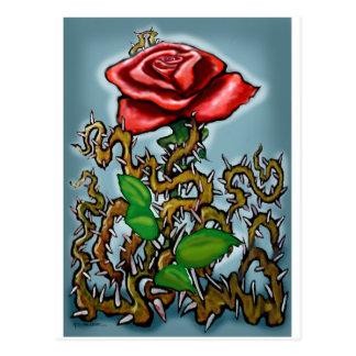 Rose n Thorns Postcard