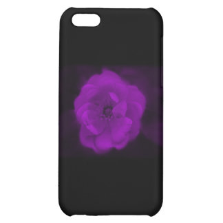 Rose negra y púrpura