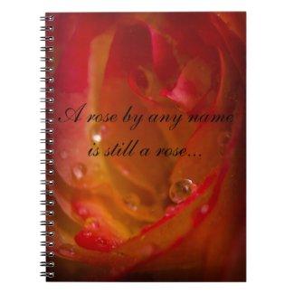Rose Notebook 1 notebook