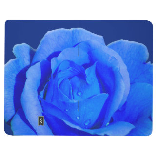 Rose Notebook Personalized Blue Rose Journal Book