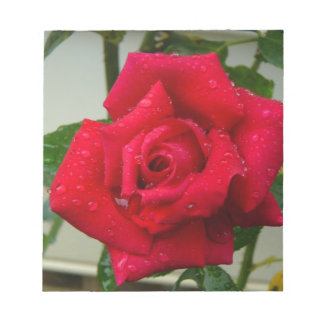 Rose Notepads