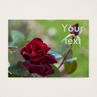 Rose of Autumn Business Card