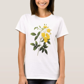 rose of Bancks (Rosa sp.) by Redouté T-Shirt