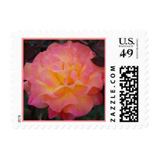 Rose of Beauty Postage
