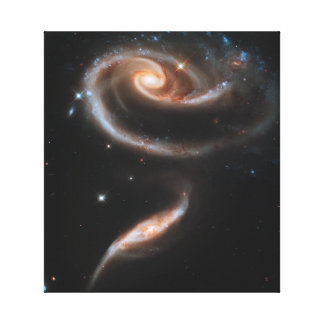 Rose of Galaxies Canvas Print