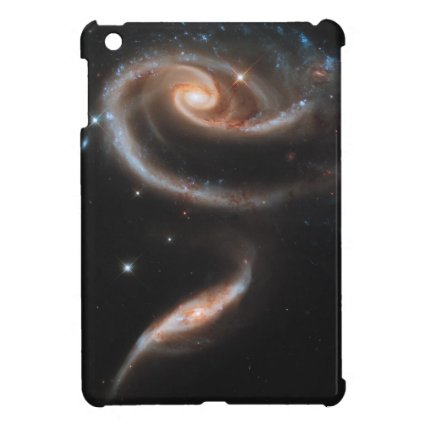 Rose of Galaxies Case For The iPad Mini