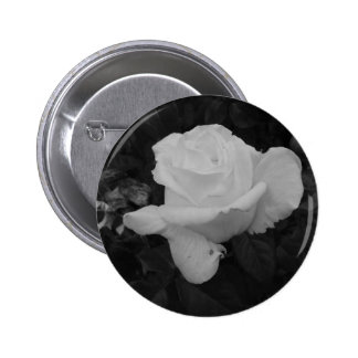 Rose of Love B/W Buttons