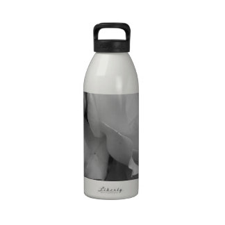 Rose of Love B/W Reusable Water Bottles