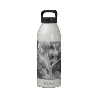 Rose of Love B/W Water Bottle
