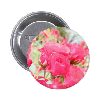 Rose of Love Pinback Buttons